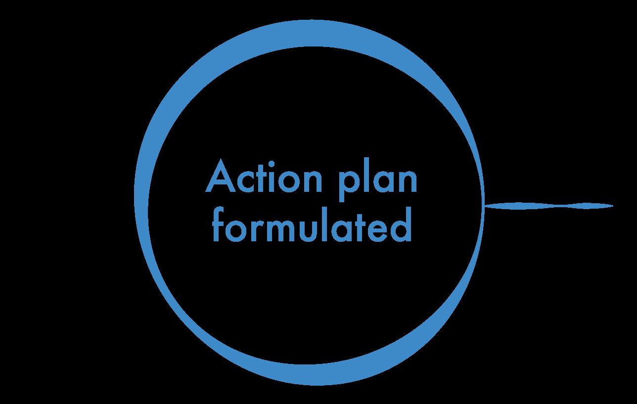 action plan circle-03.png