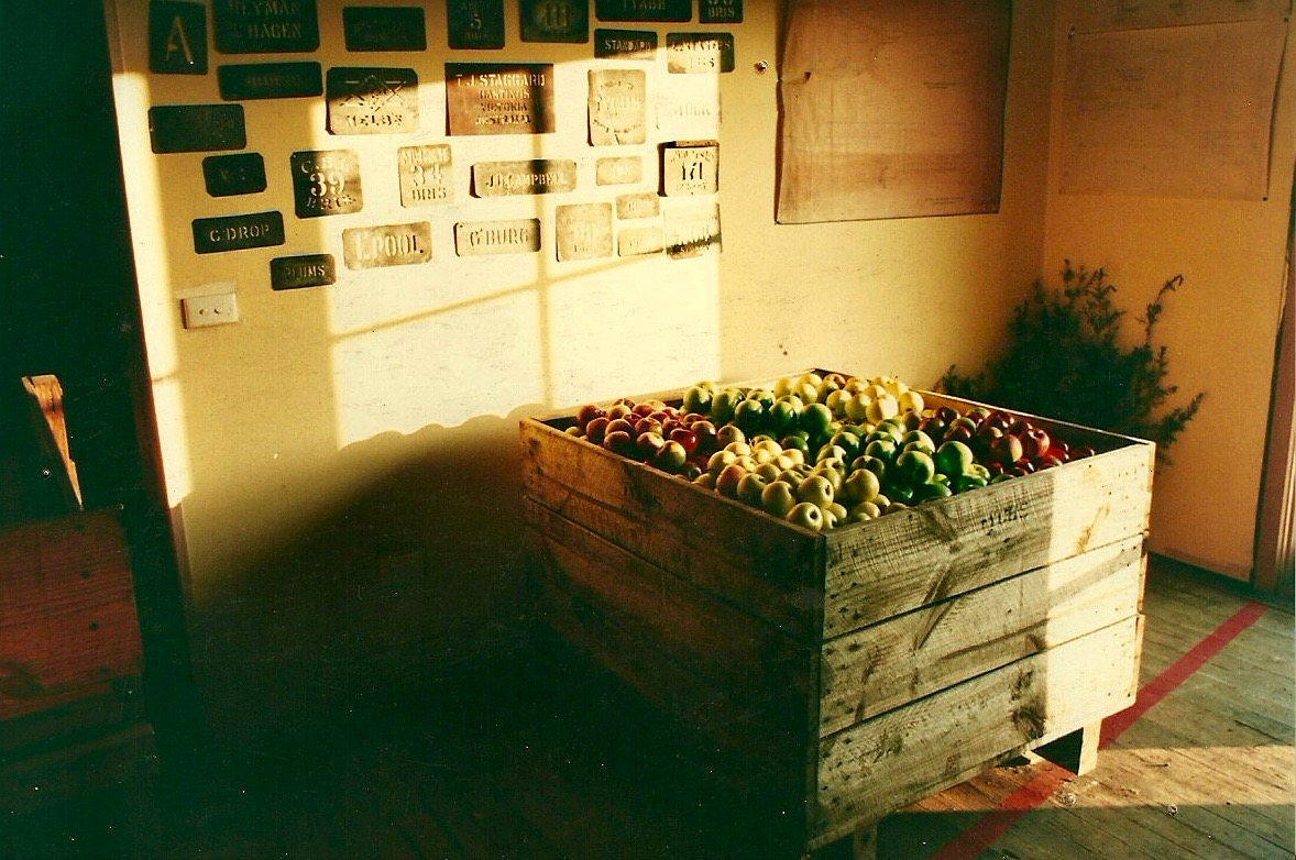 TPHA history - Apple crate.jpg