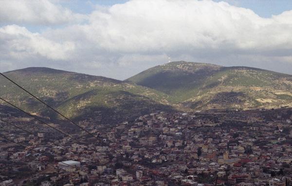 Olives, 2012