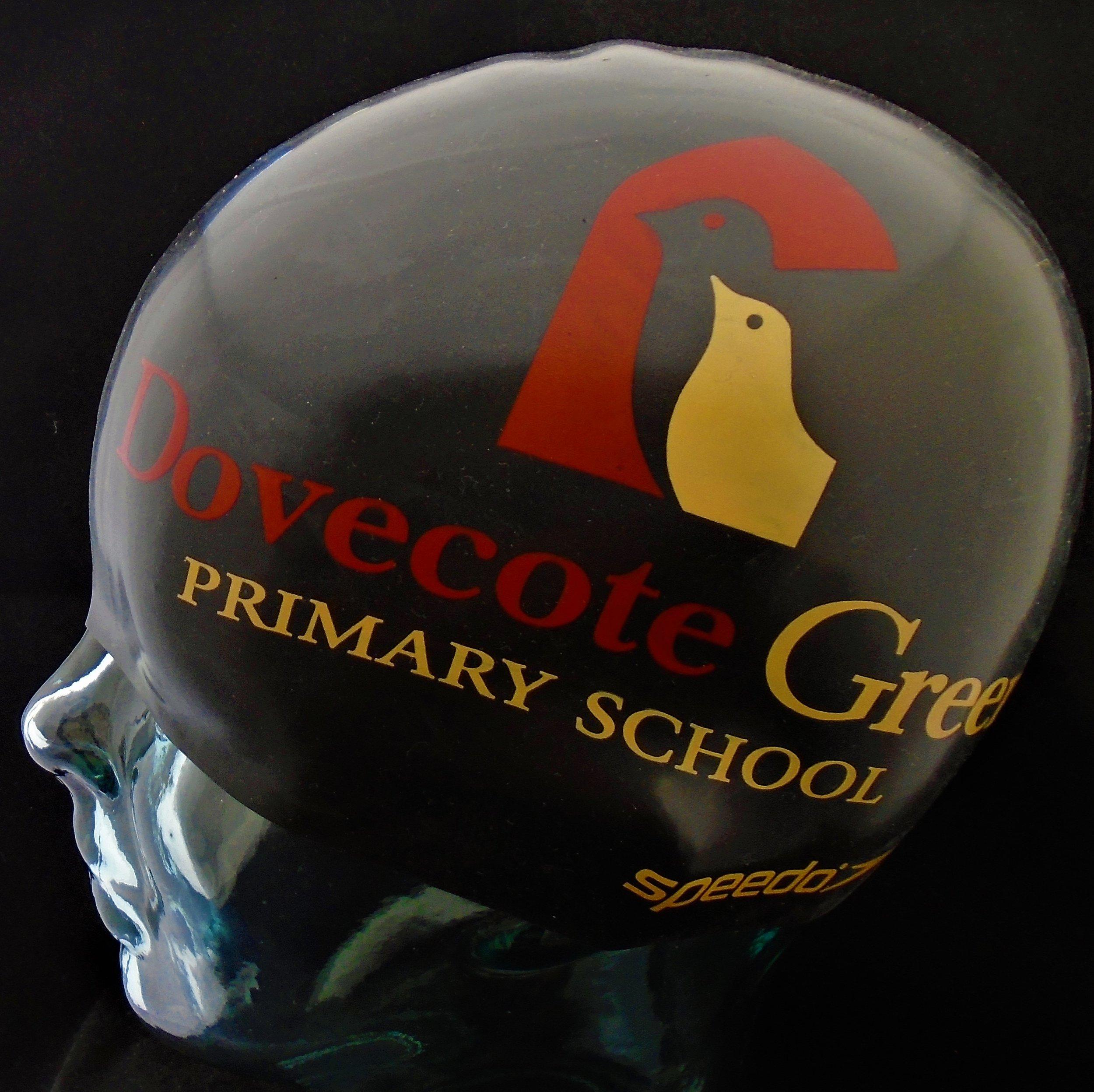 Dovecote Green Primary.jpg