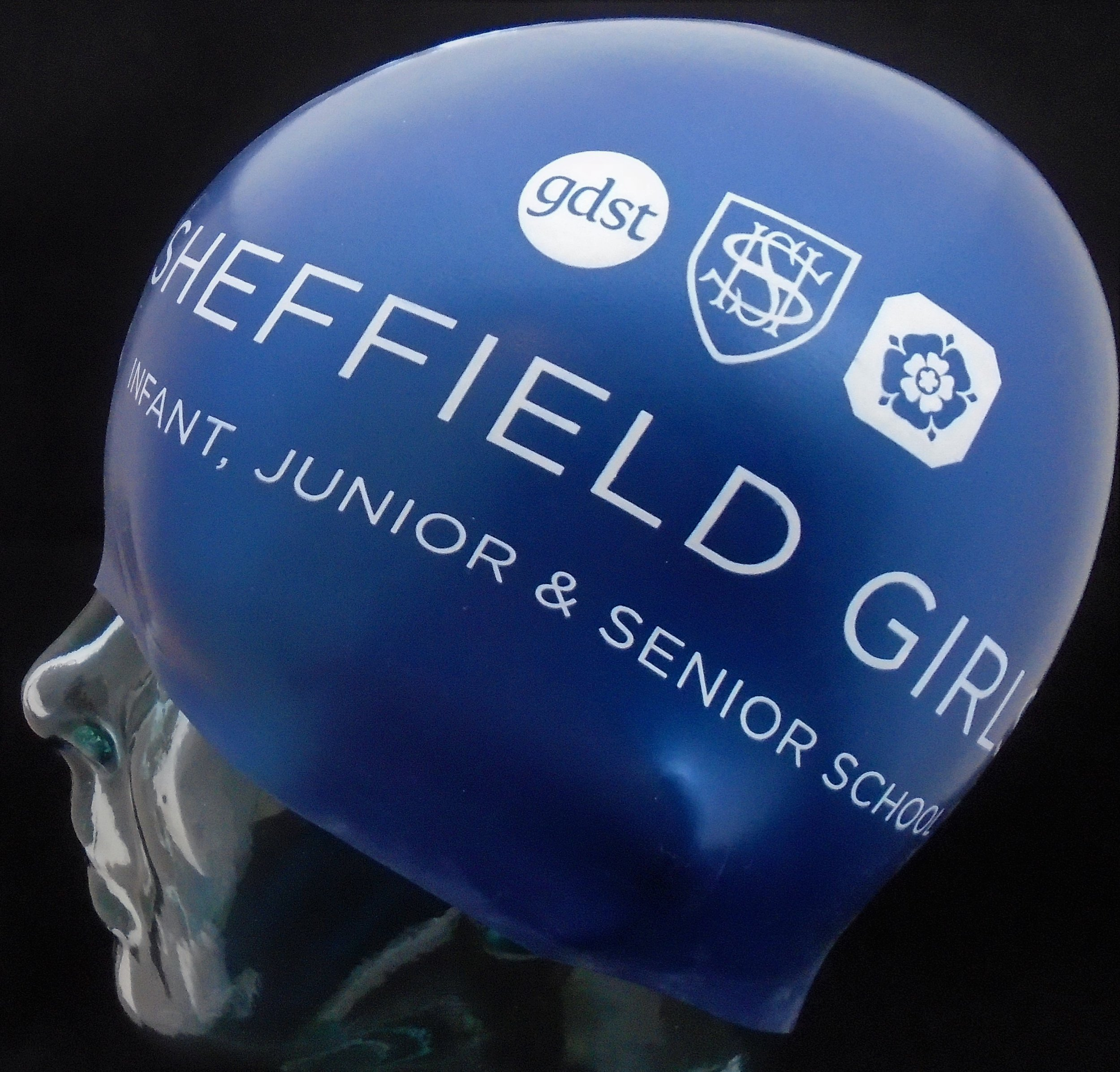 Sheffield Girls School.jpg