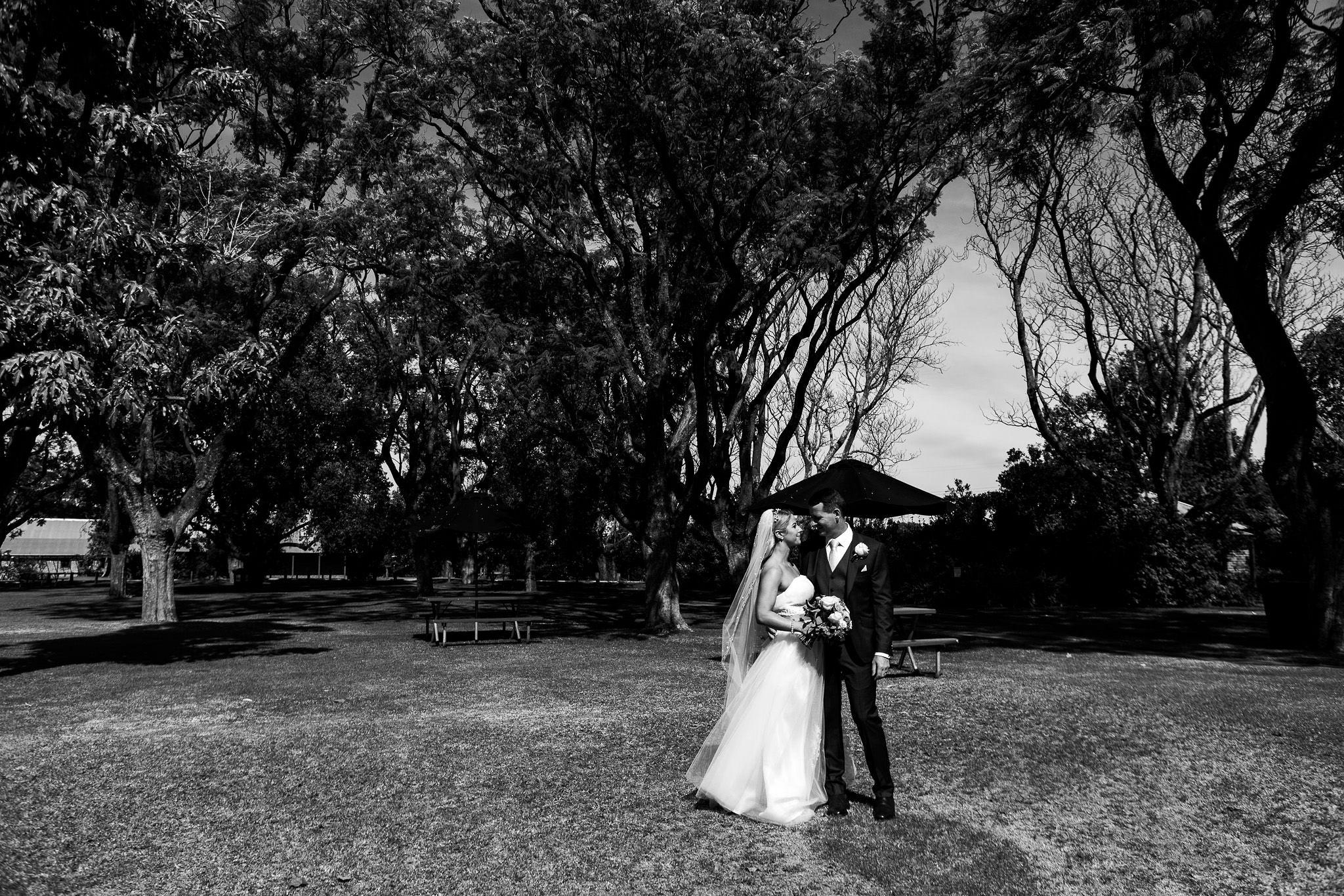 Copyright www.ameliakate.com.au