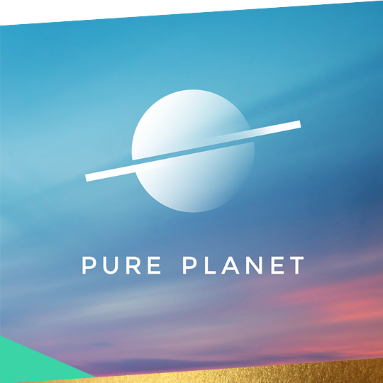 LAUNCHING A CHALLENGER BRAND  PURE PLANET    READ MORE
