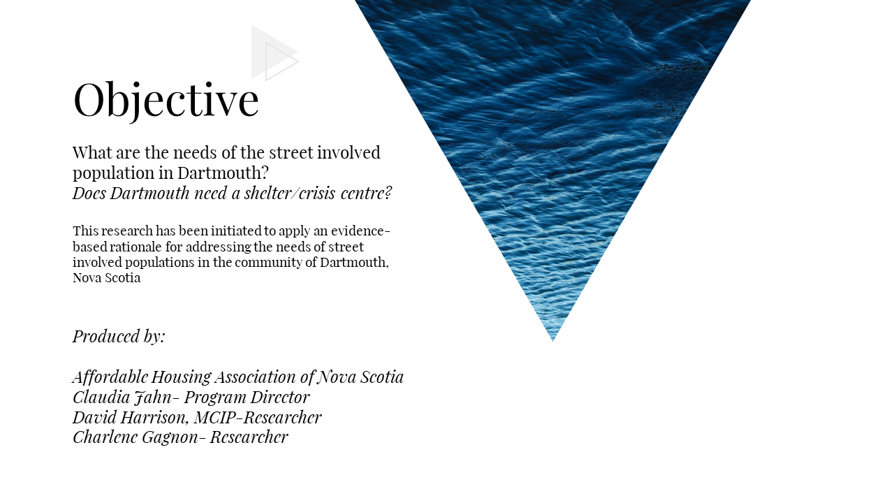 Dartmouth Homeless Population Assessment.2.PNG