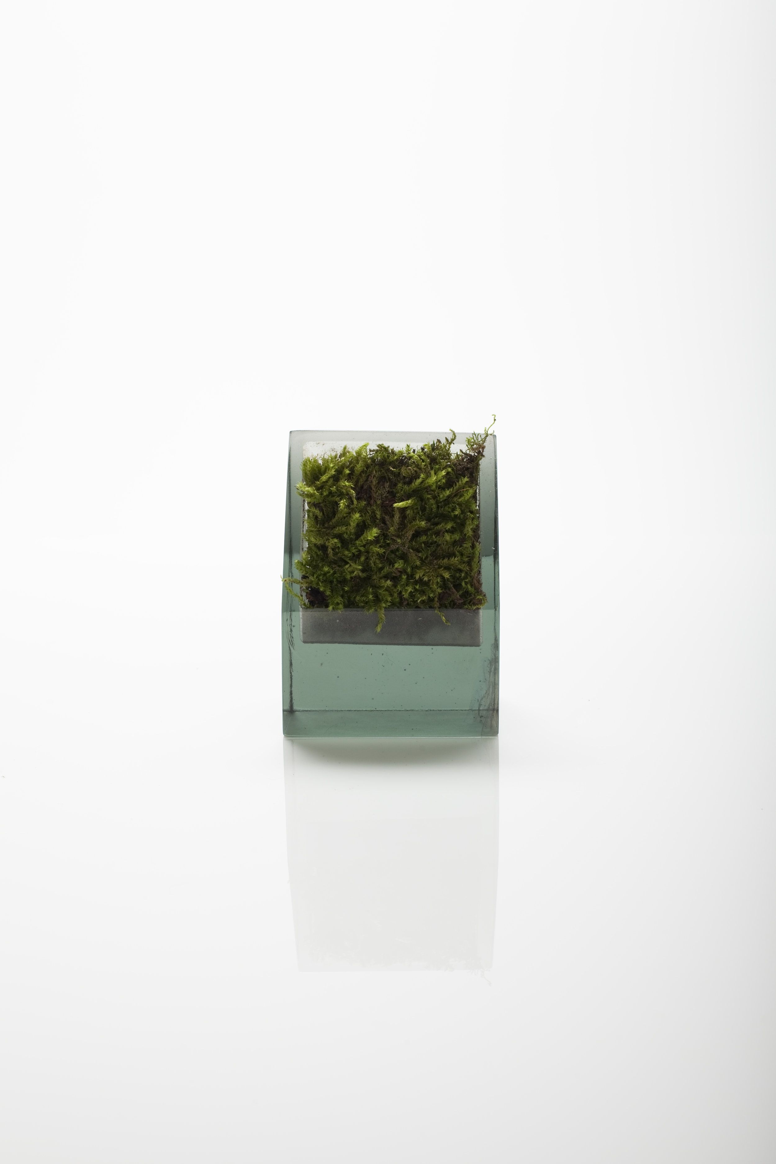 Cast glass and moss. 2011
