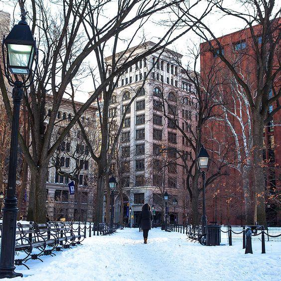 New York University NYU c/o @ nyuniversity