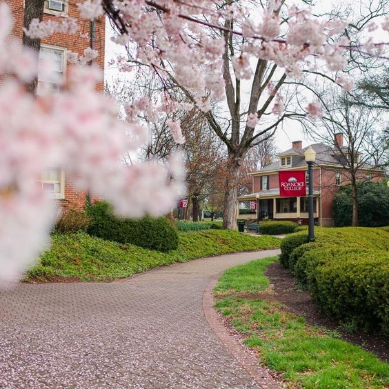 Roanoke College c/o @ roanokecollege