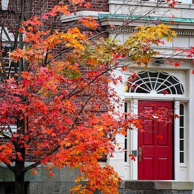 Throwing it back to this view of Cabot House by @harvard. Tag a friend who'd opt for fall ALL year round! ☺️🍂📚 We know we would! ❄️🙄🤷🏼‍♀️ #PMCVhitlist #harvardinautumn
