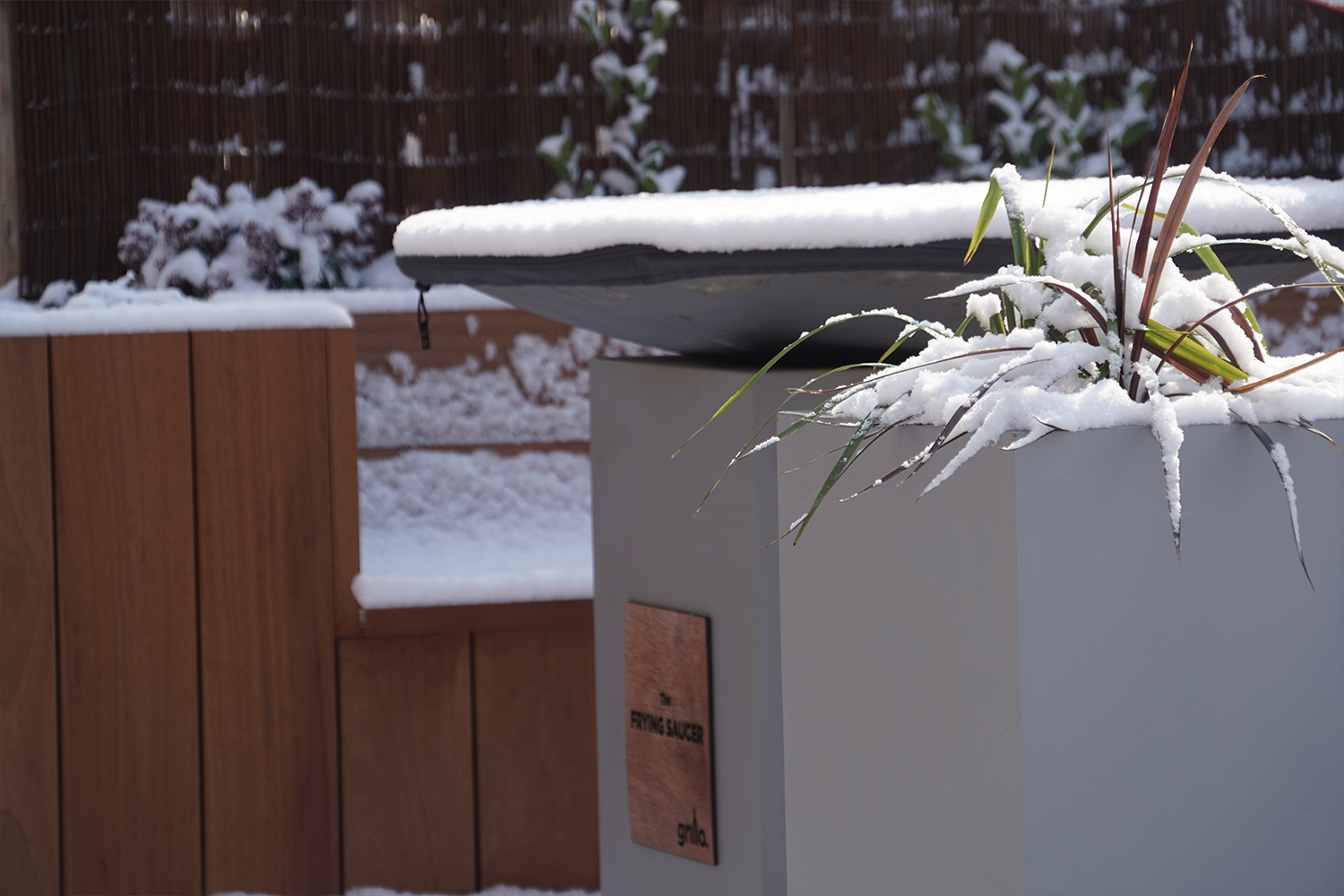 forge in the snow all weather.jpg