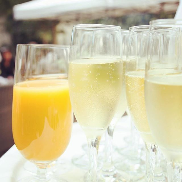 Is it event day yet?! We can hardly wait to kick start the festivities with the Race to Brunch 5K Presented by @prestige_cu ✨🤩🍾🏃🏽‍♀️🏃🏽‍♂️Register today for discounted pricing at yellowwoodfestival.eventbrite.com! 🤩🍾 #yellowwoodfestival #mimosajuice #racetobrunch #willrunforfood #galswhobrunch #brunchbunch #dallastx #seekyouradventure #mckinneyrunningclub #dallasrunners