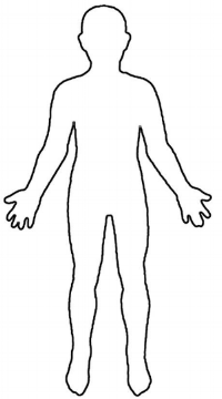 Click to download body template.