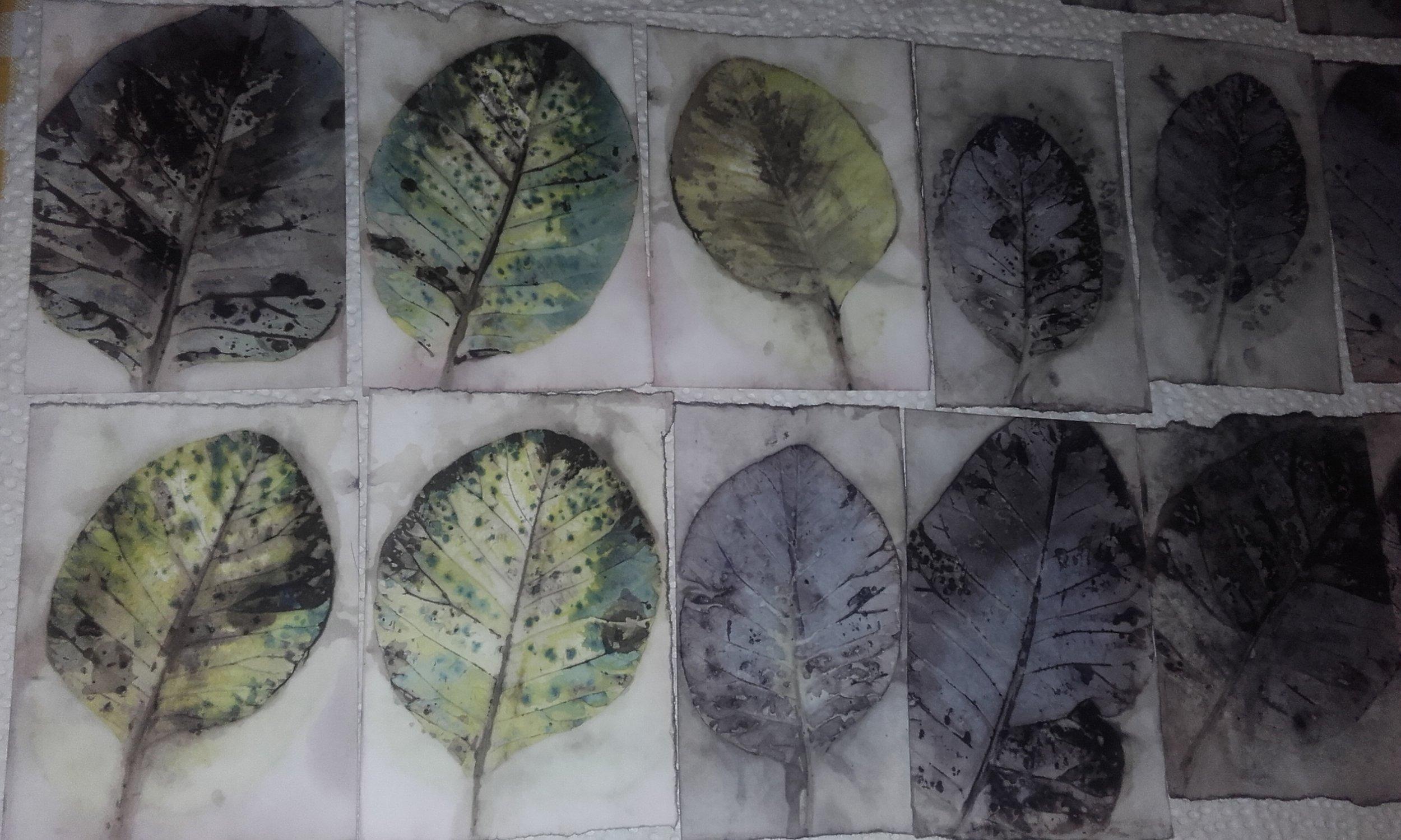 ecoprint Lizzie Godden (1).jpg