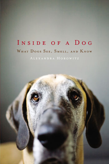 Inside-of-a-Dog-cover.jpg