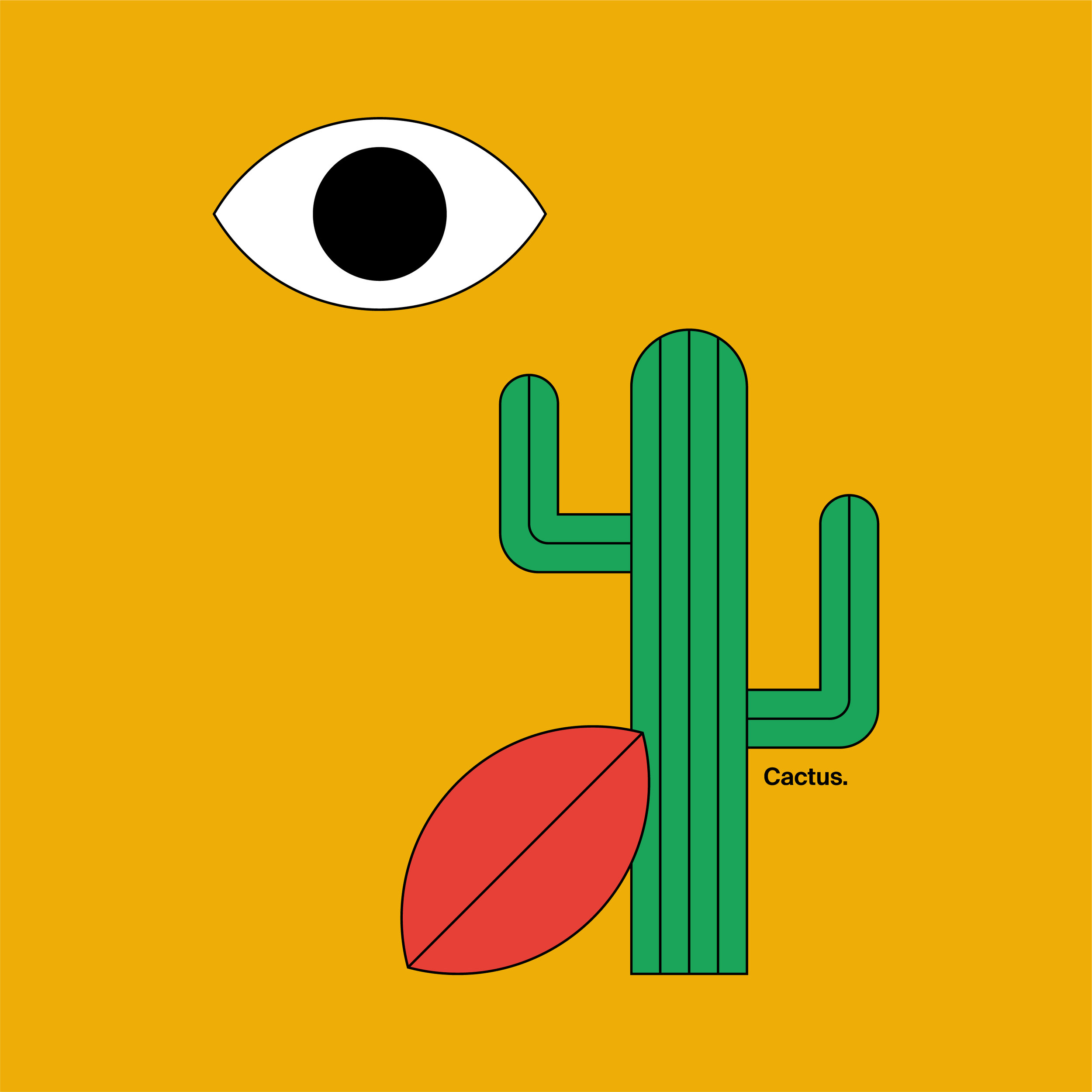 cactus_illustration_instagram_post_03.jpg