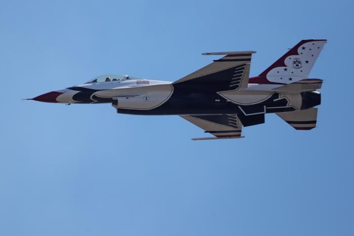 falcon5.jpg