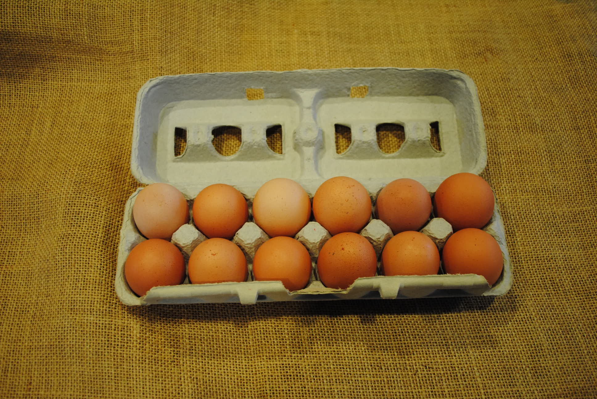 Our Pastured Eggs - Gorgeous yolks and packed with protein