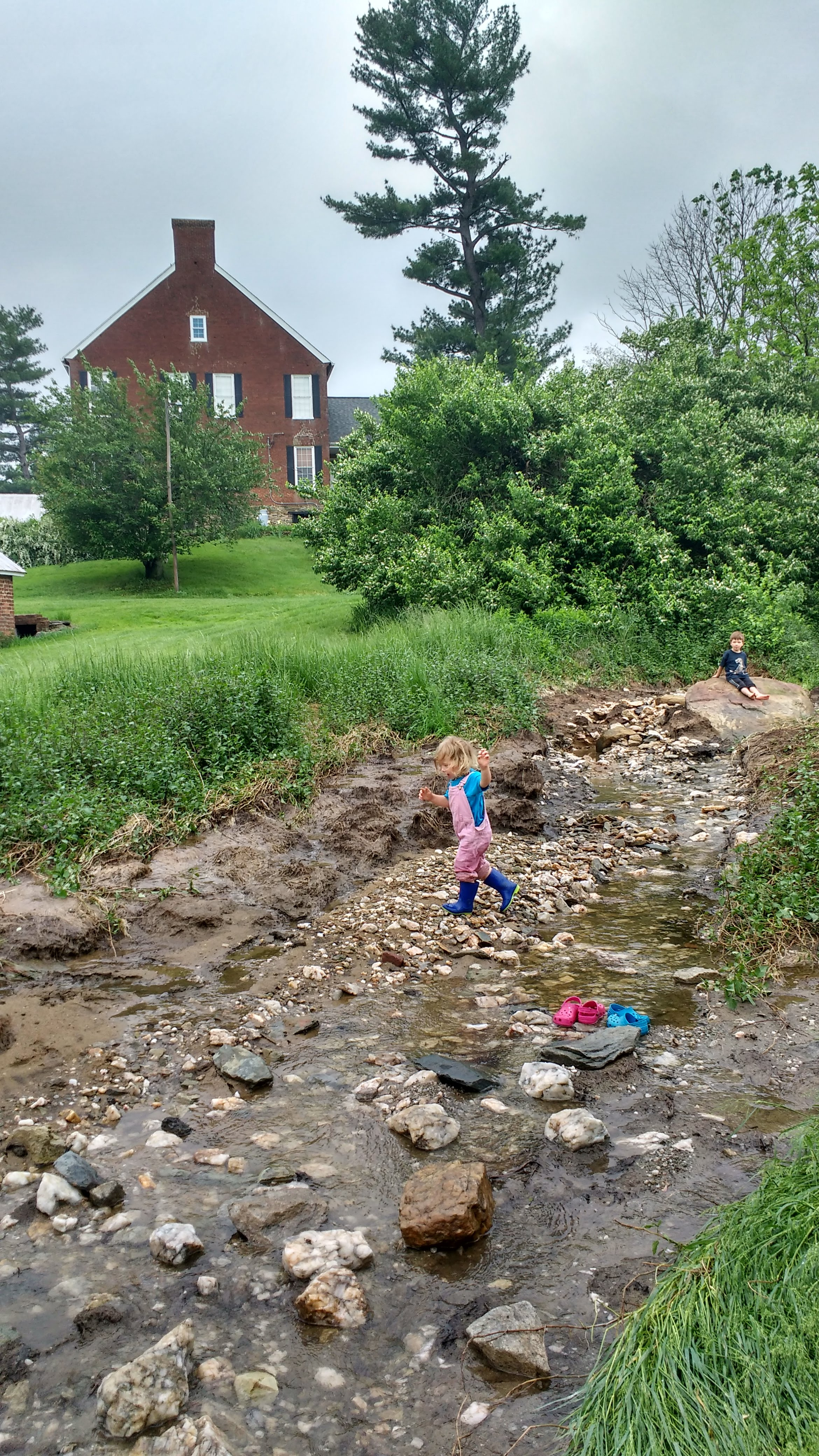 Upstream of our pond, to the right of the driveway as you drive in. This may look unfamiliar, as it was always been covered in dirt and plants. Now, apparently, it is a very lovely stream bed.