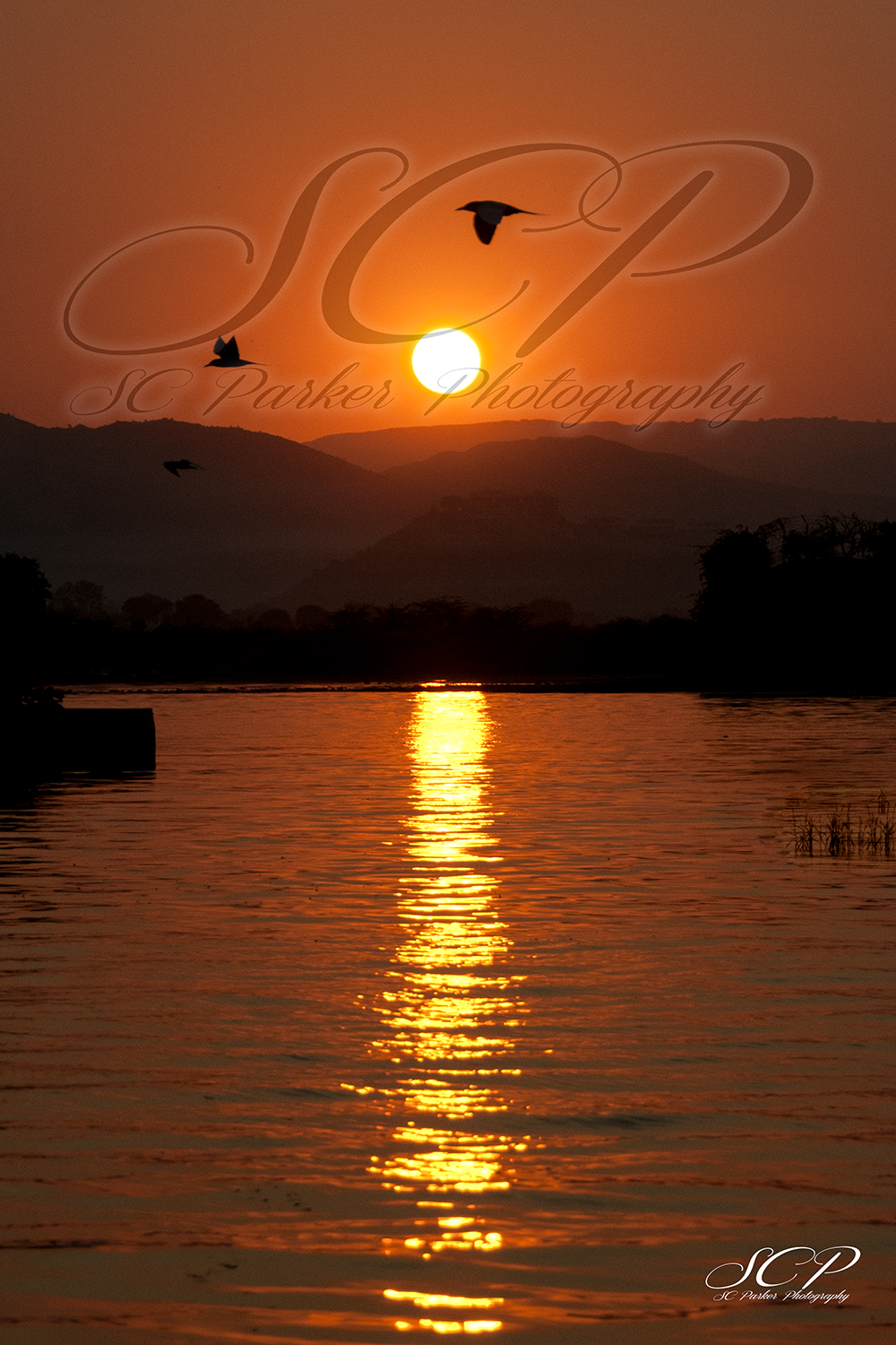 Website_Sunset India 12x18 Samantha Parker. SCParkerpPhotography.png