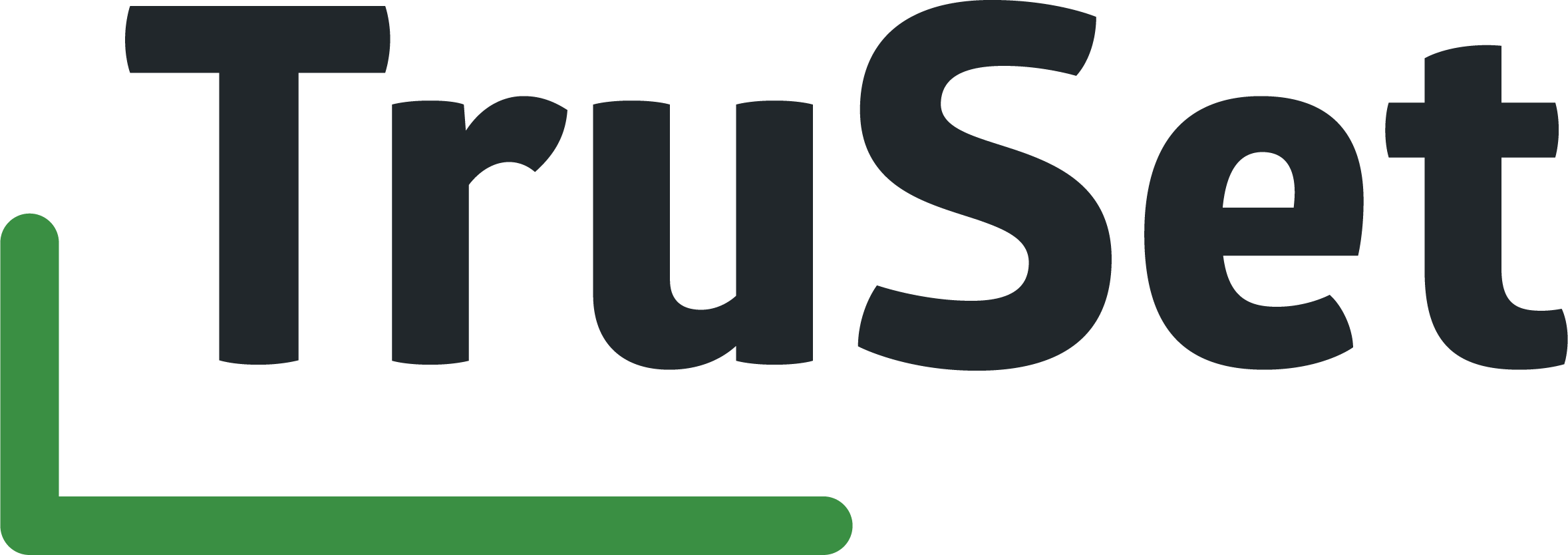 trueset_logotype.png