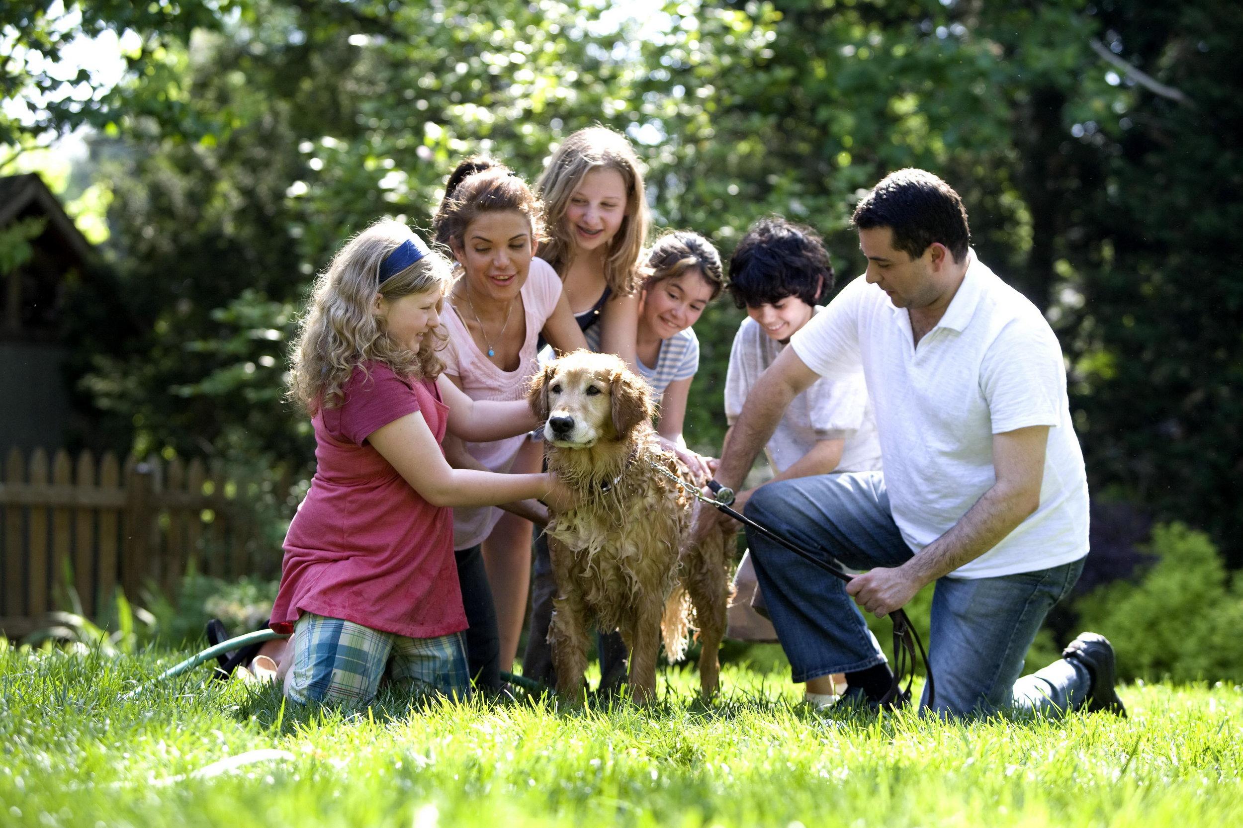 A family washes their Labrador. Source:  Cade Martin