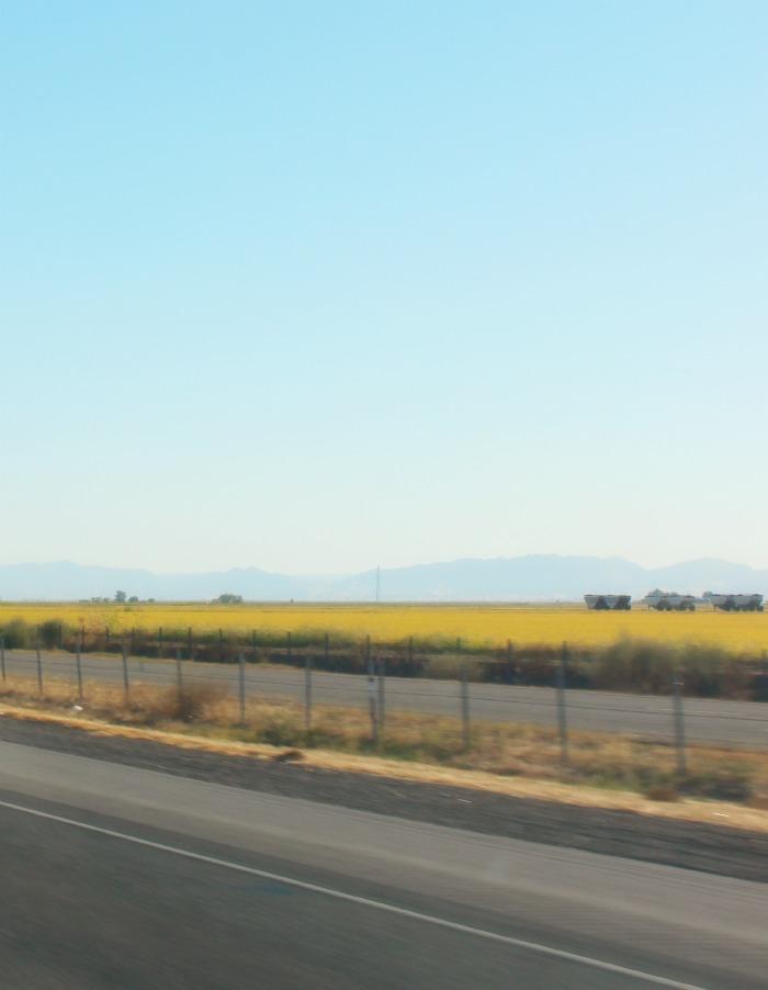 road-to-williams-ca-louis-cairo