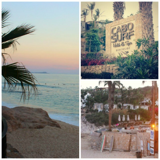 Cabo Surf Hotel Collage