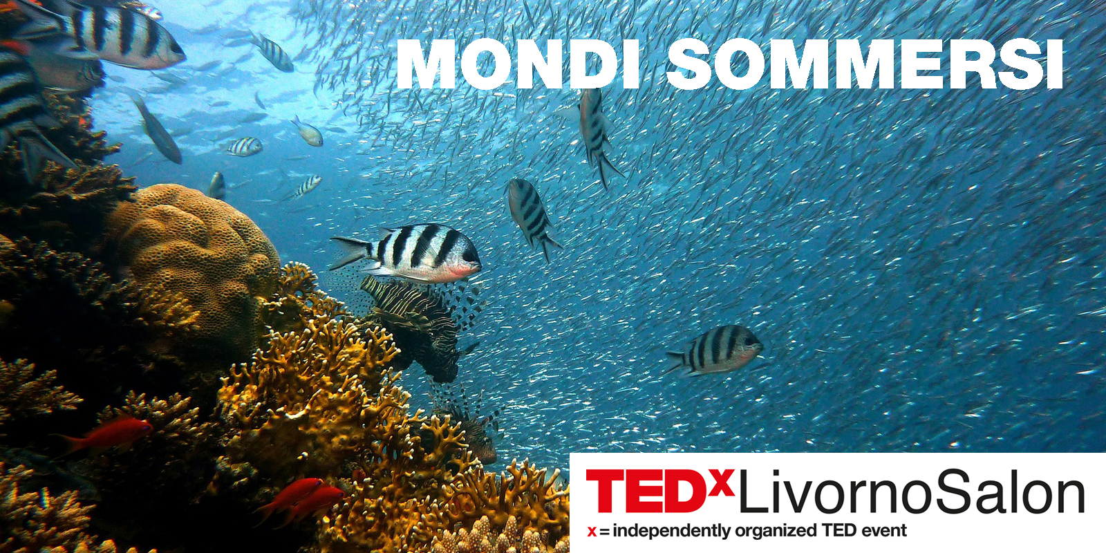 Cover-TEDxLS5.jpg