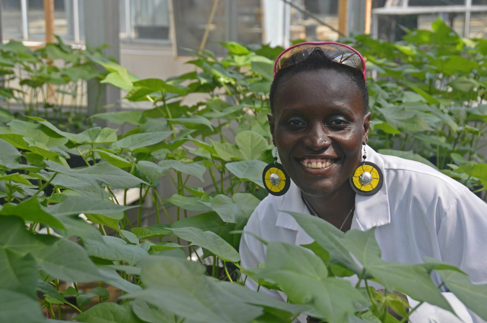 Esther Ngumbi at Auburn University Plant Center Research Center—(picture taken by Dr.Joseph Kloepper).