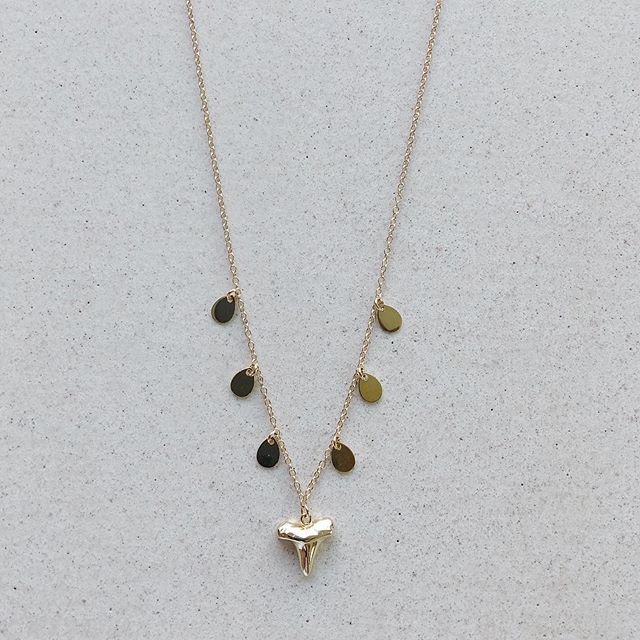 Shark Tooth Small with Coins Necklace  Available in 14k Gold Vermeil or Sterling Silver  length 16in with one inch extender 🦈
