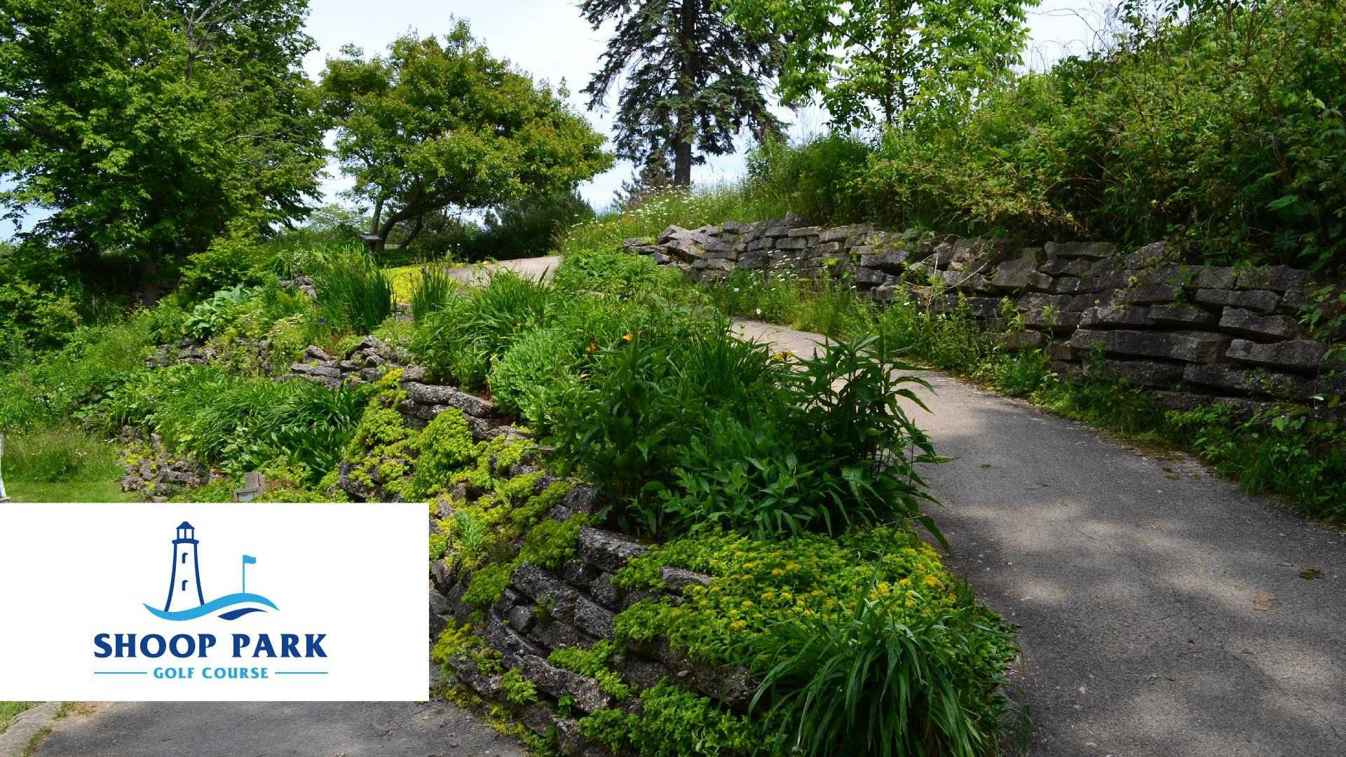 Shoop-Park-Golf-Course-Green-Golf-Partners
