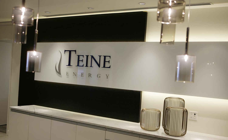 TEINE Logo CCC.jpg