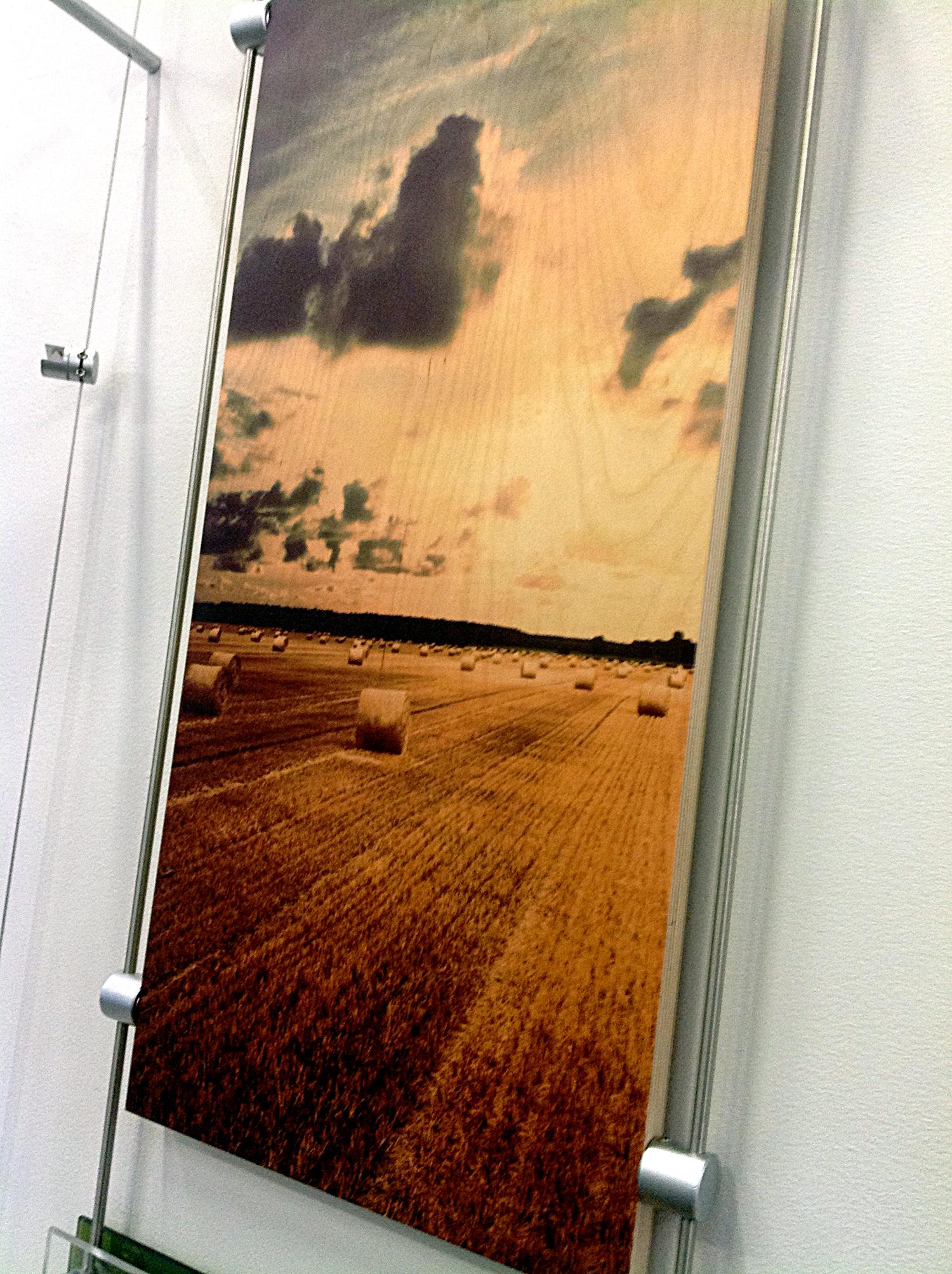 Quintaro Printed Plywood CCC.jpg