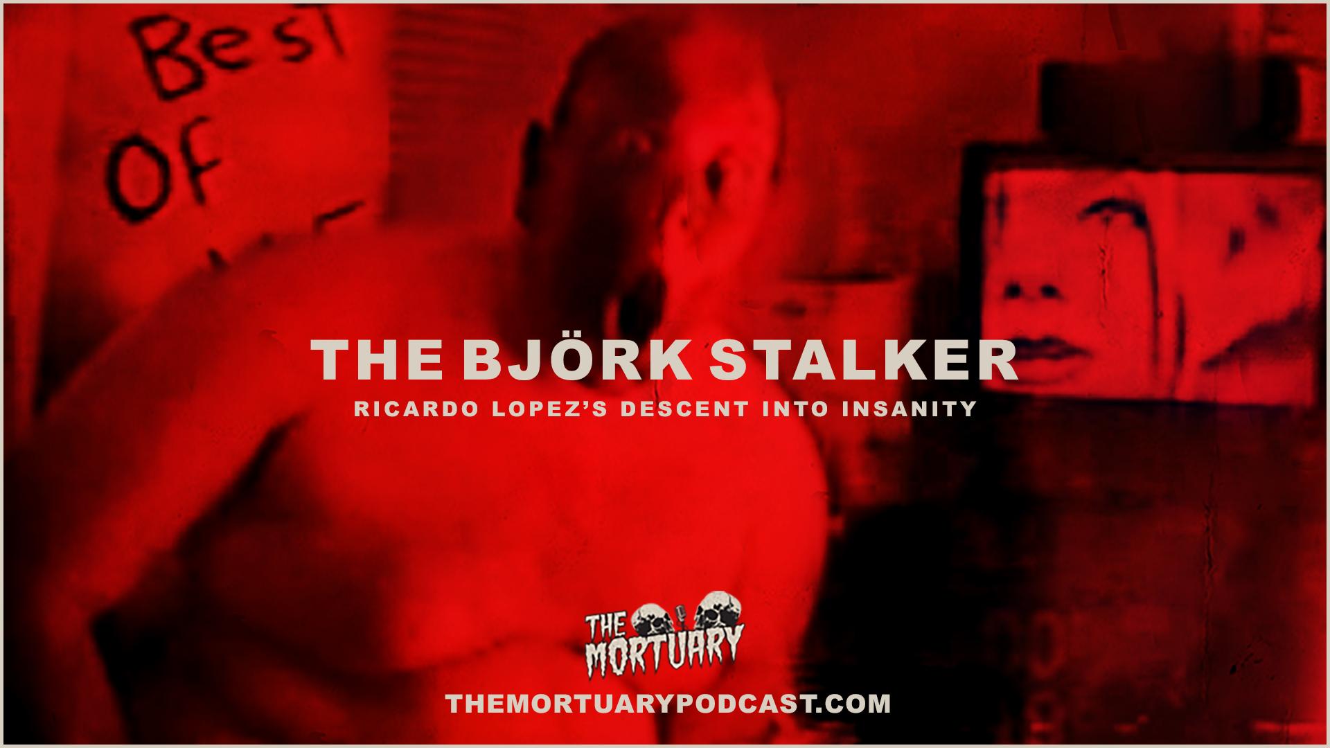 Sept 2019 Bjork Stalker Thumb.png
