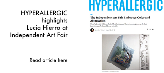 News_Hyperallergic_LuciaHIerro.jpg