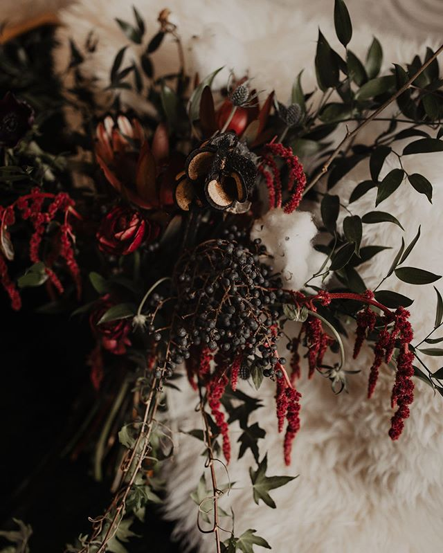 🖤 moody vibes today 🖤 . 📷 by @summerleighaphoto . . . . . . . . . . . #floral #flowers #chicago #design #chicagocreative #chicagofloral #floraldesign #chicagoflorist #florist #evanstonflorist #blooms #nightshade #nightshadechicago #nightshadeflorals #💐 #womenowned #womanowned #chicagowomen #shopsmall #shoplocal #chicagowedding #weddingflowers #moody