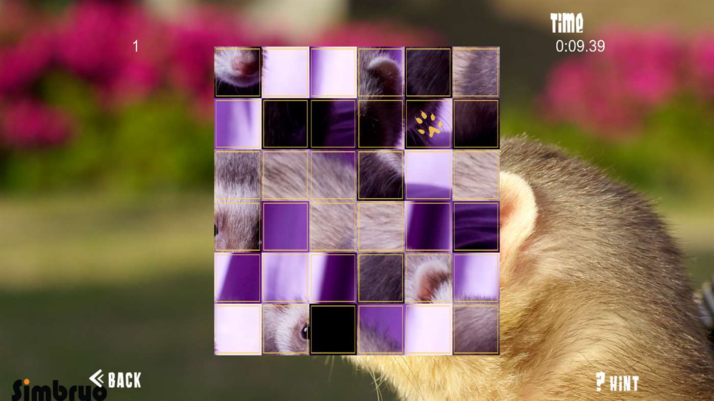 Ferret Puzzles