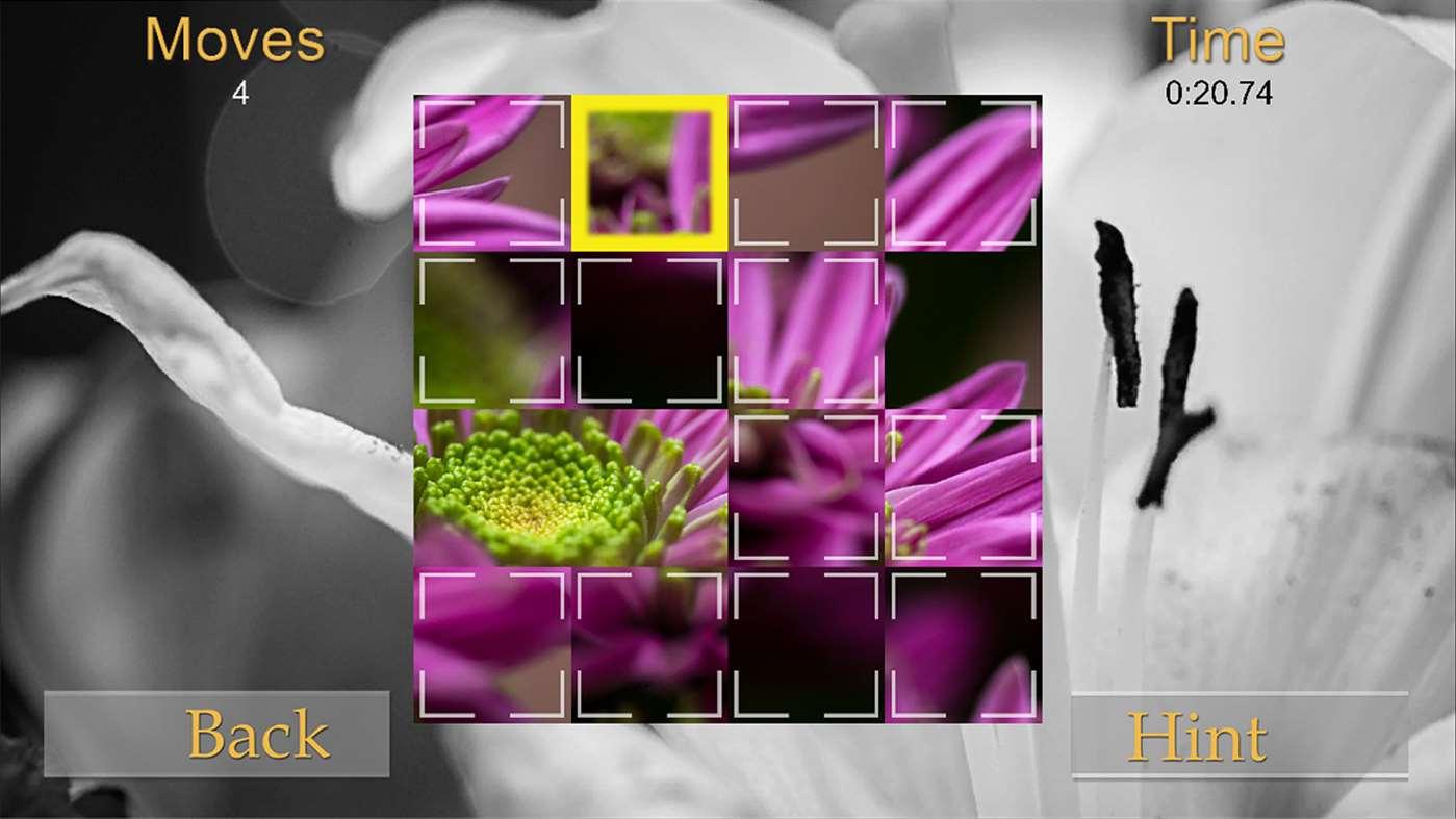 Bloom Puzzles