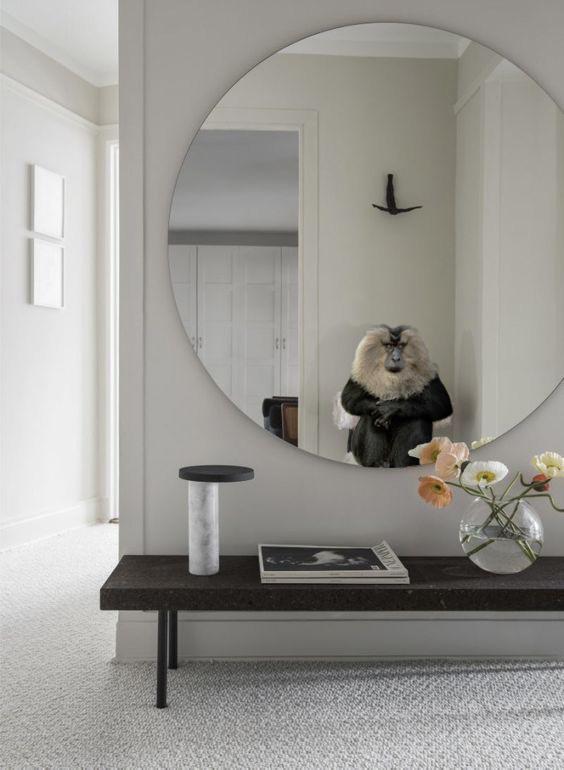 Monkeys in Mirrors