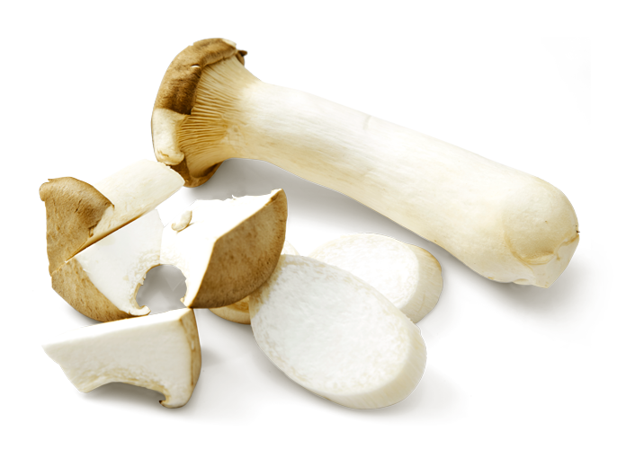 king-oyster-mushroom-01.png