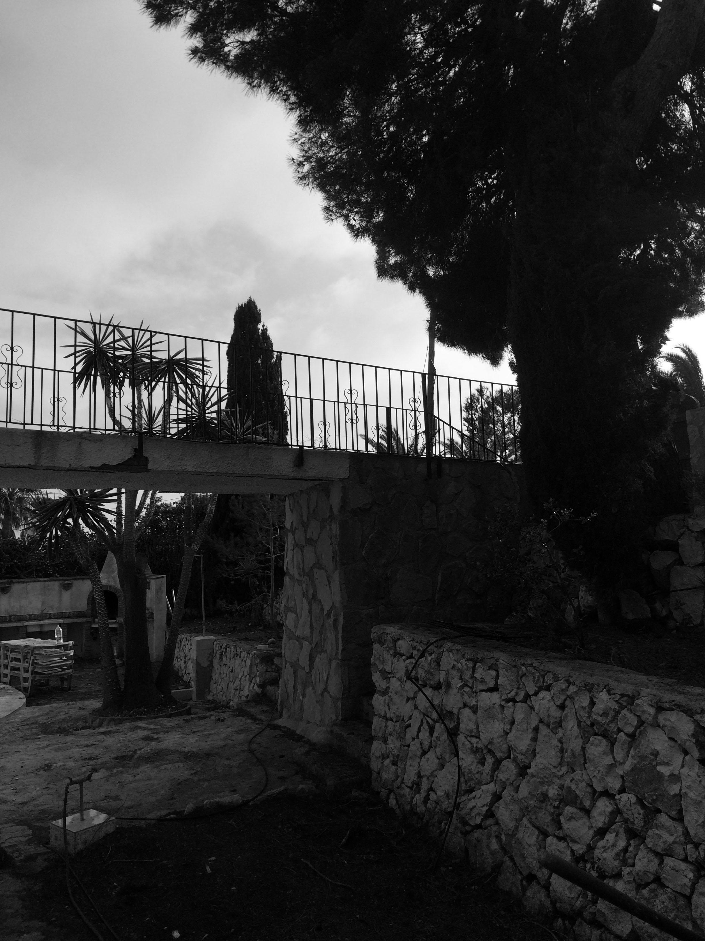 Jardin 15022017-11.jpg