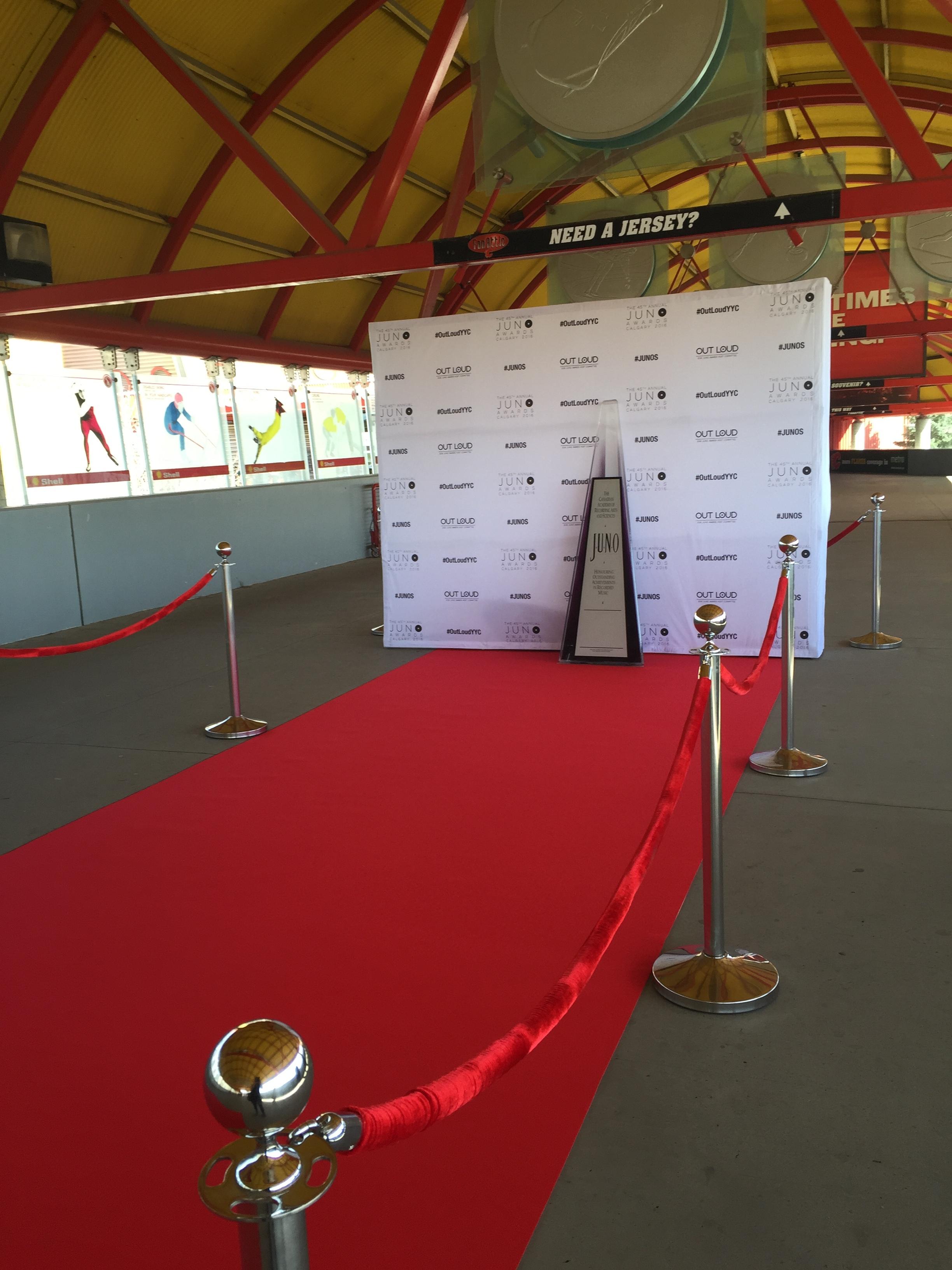 Public Red Carpet for fans