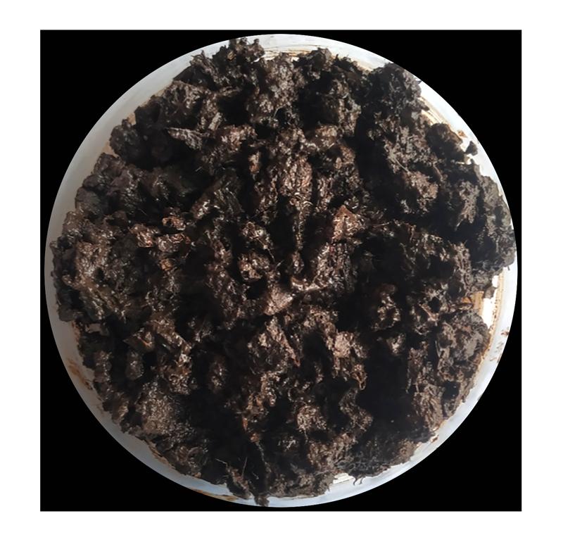 Figure 3:Nest Diaper after test (compost) -