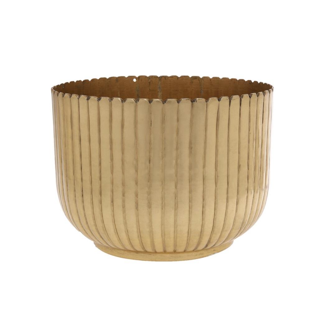 $5 Dahlia Vases (6)