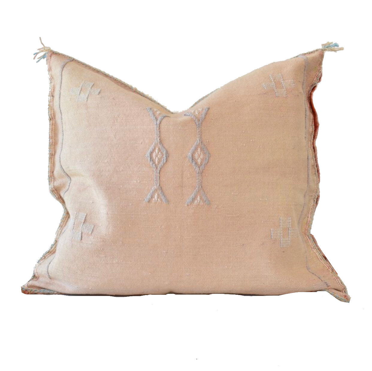 $5 Irene Cactus Silk Cushion  (1)