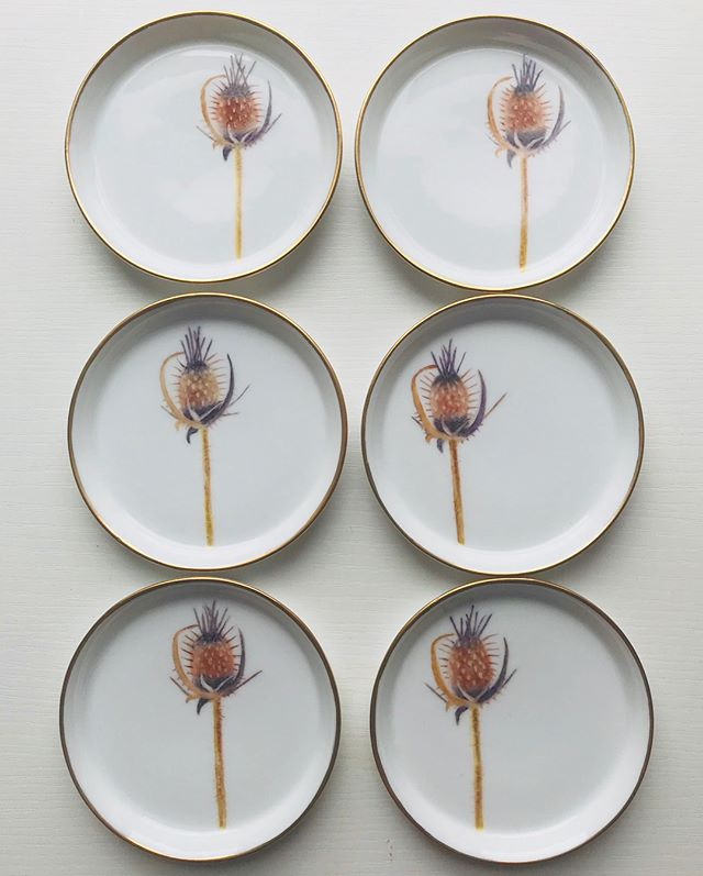 One of our donors, Trudy Nelson, hand painted and fired 6 gorgeous dishes for us, each with a unique thistle bud. Thank you Trudy! They are gorgeous!