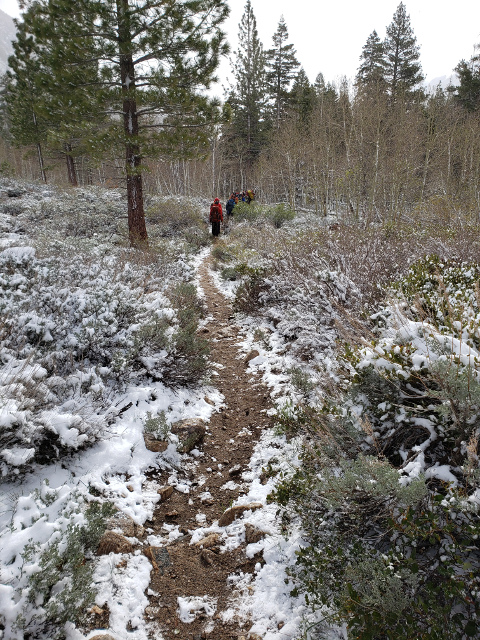 Gaining the trail immediately after the creek crossing.  Image by B. Beck