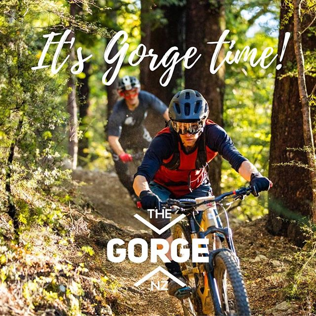 Who's coming for a razz this weekend, the weather looks mint! Limited places left for Sunday (Saturday is booked out). www.thegorge.nz 📸 @henryjainephotos  #wgbp #thegorgenz #wairoagorge #nelsontasman #nelsonmtb #nmtbc #nz #newzealand #nelson #mtb #mountainbike #singletrack #lifebehindbars  #specialized_nz #villagecyclesnz #extraordinary