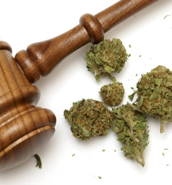congressman-sabotaging-legal-cannabis-hero-560x600.jpg