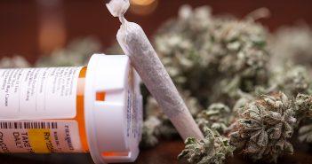 marijuana-covered-by-insurance-351x185.jpg