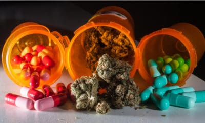 canadian-cannabis-company-joined-forces-big-pharma-hero-400x240.jpg